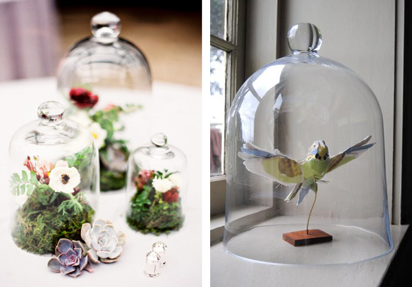 bell jars for birds and flowers wedding ideas