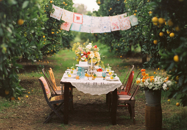 intimate orchard wedding reception featured image
