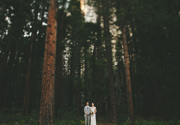 wedding photo in the forest_feat
