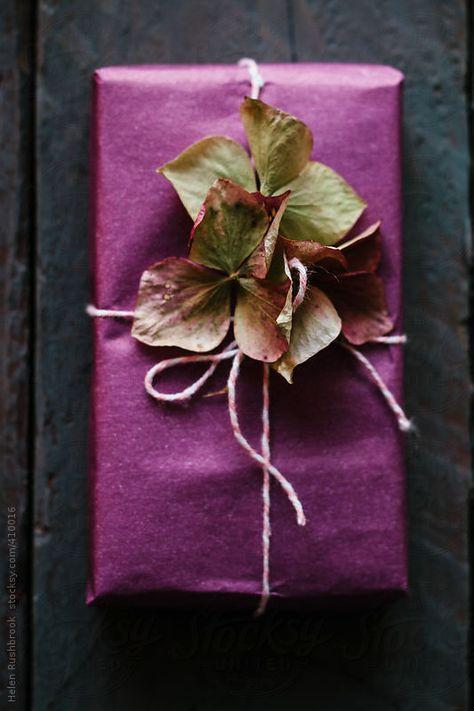 gift-wrap-hydrangea